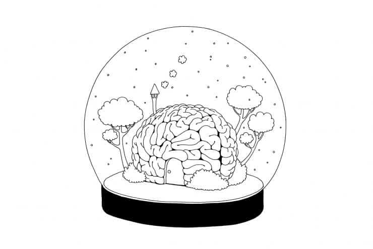 Brain in Bowl