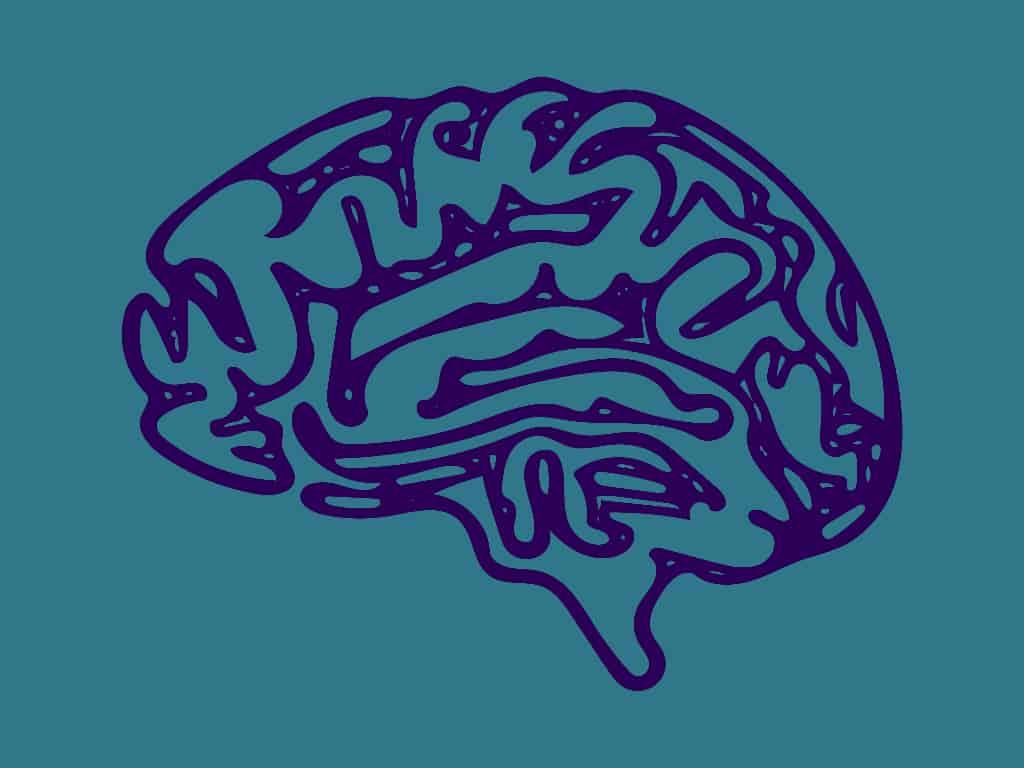 predicting academic outcomes neuroimaging provides novel insights